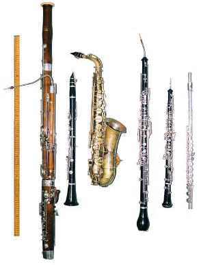 Woodwind - June Sale - 10% Off Now!