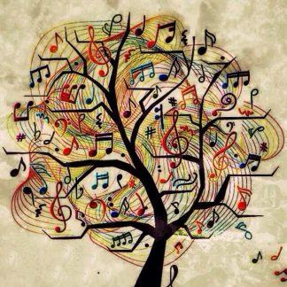 Individual Ensembles